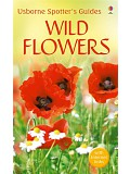Usborne Spotter´s Guides - Wild flowers